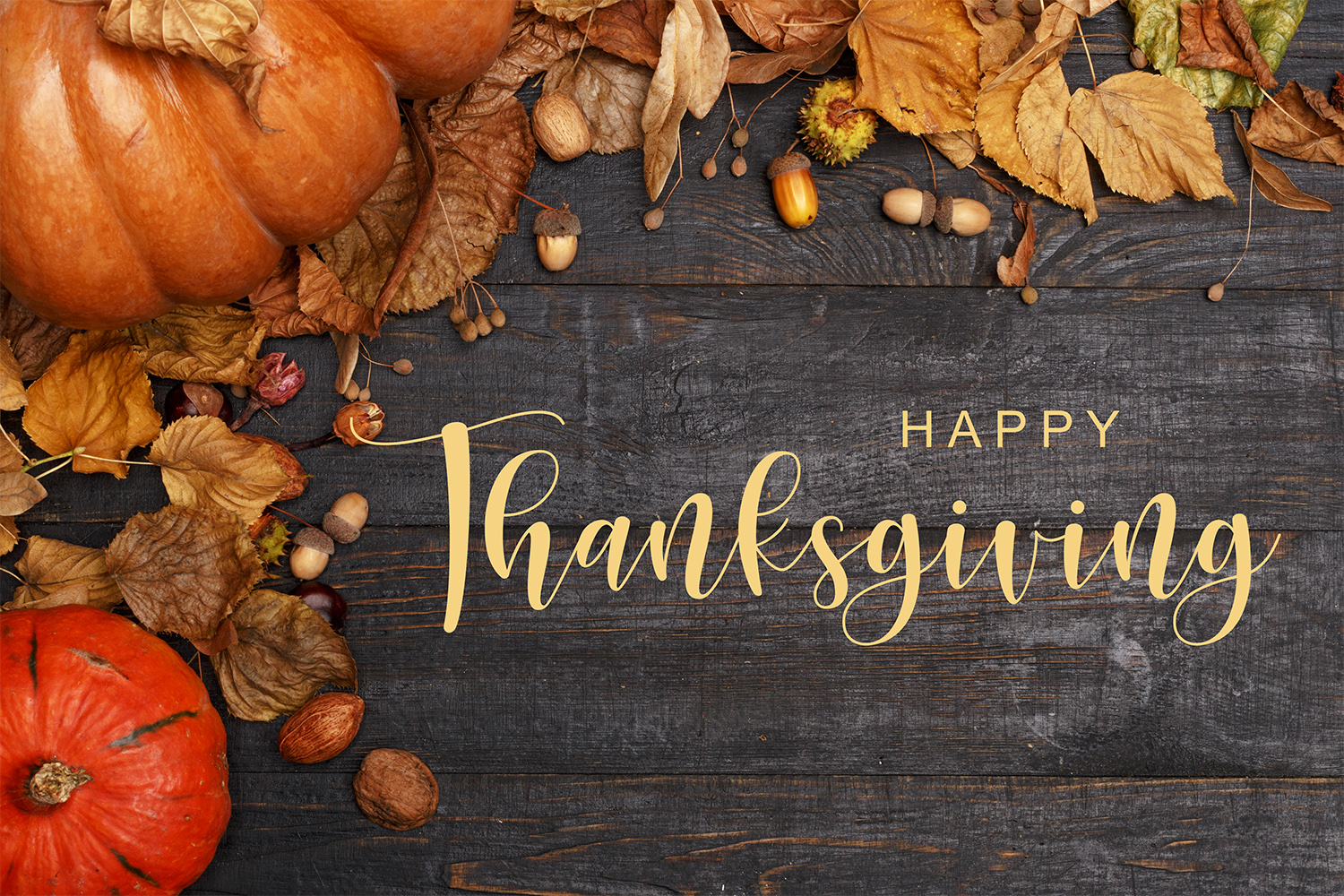 At LightHouse Automotive, We Have a Lot to Be Thankful For!