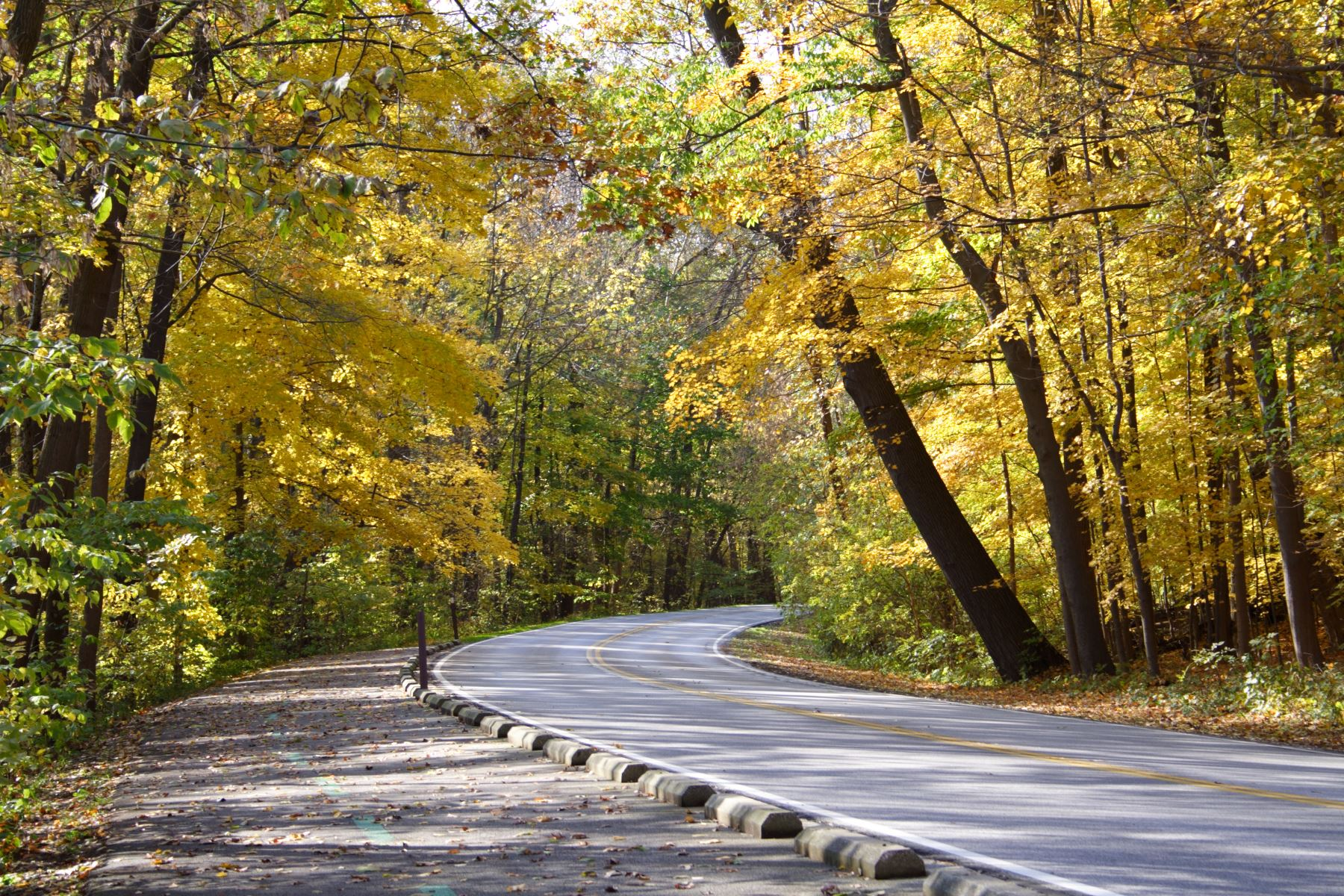 9 Fall Car Care Tips for Colorado Drivers